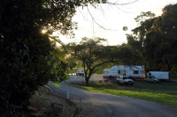 20140811Daintree riverview park